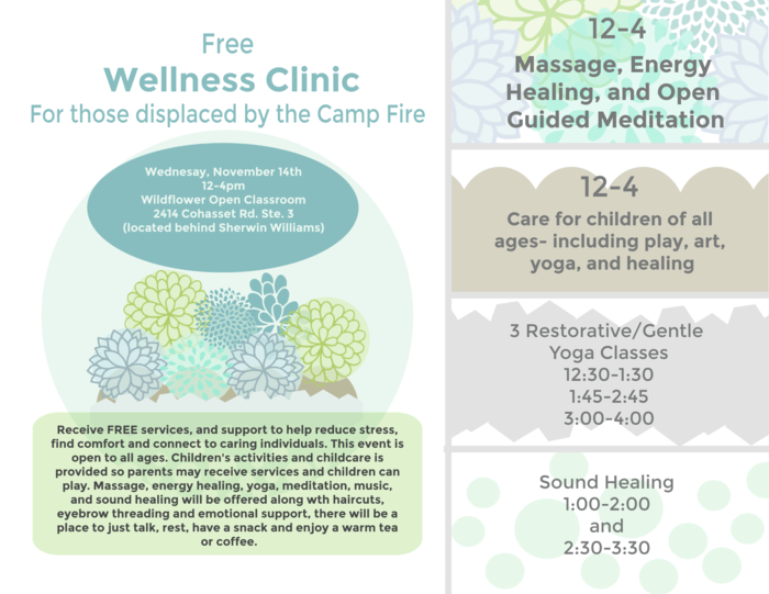 Wellness Clinic Flyer