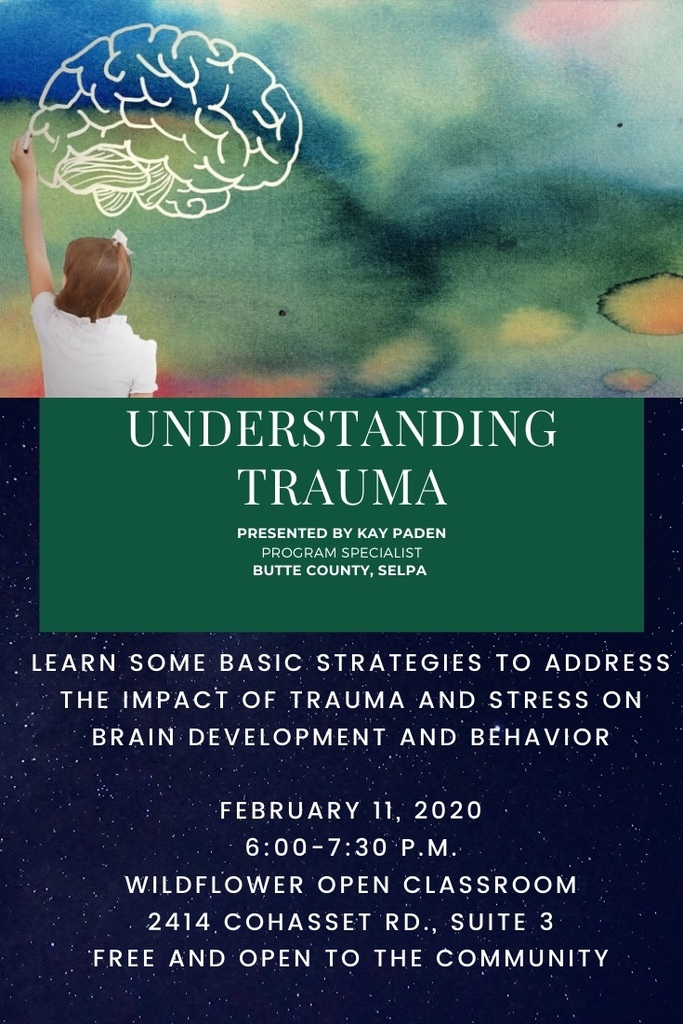 Understanding Trauma Training