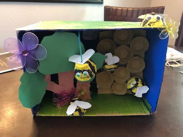 PIP (Personal Interest Project) a student in Becky's 3/4 class did research on honeybees and he made a diorama.